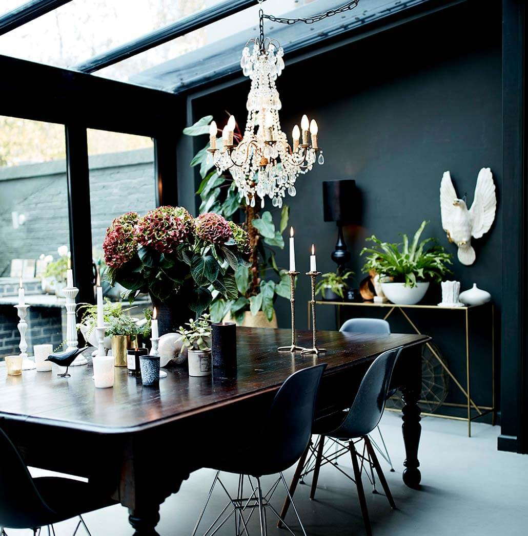 the best vases and plants for your home